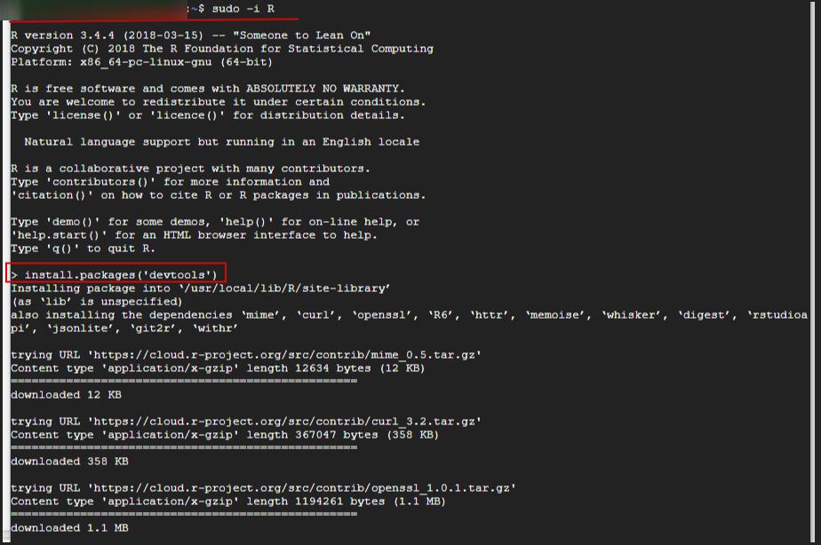 установка необходимых пакетов с помощью команды install.packages с консоли Ubuntu